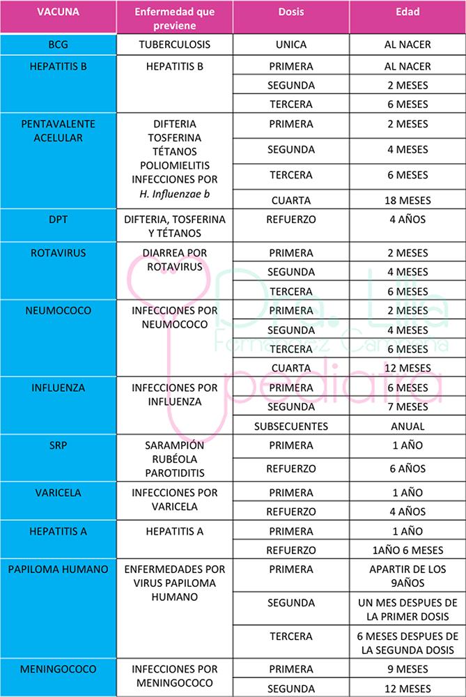 cartilla-vacunacion